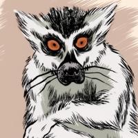 lemur-bg