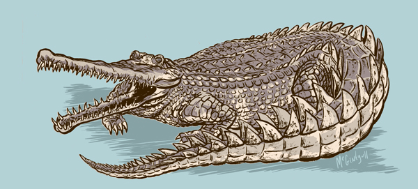 Animal Alphabet F is for False Gharial