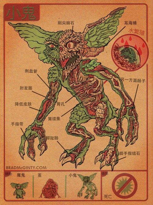 Anatomy of the Gremlin Print